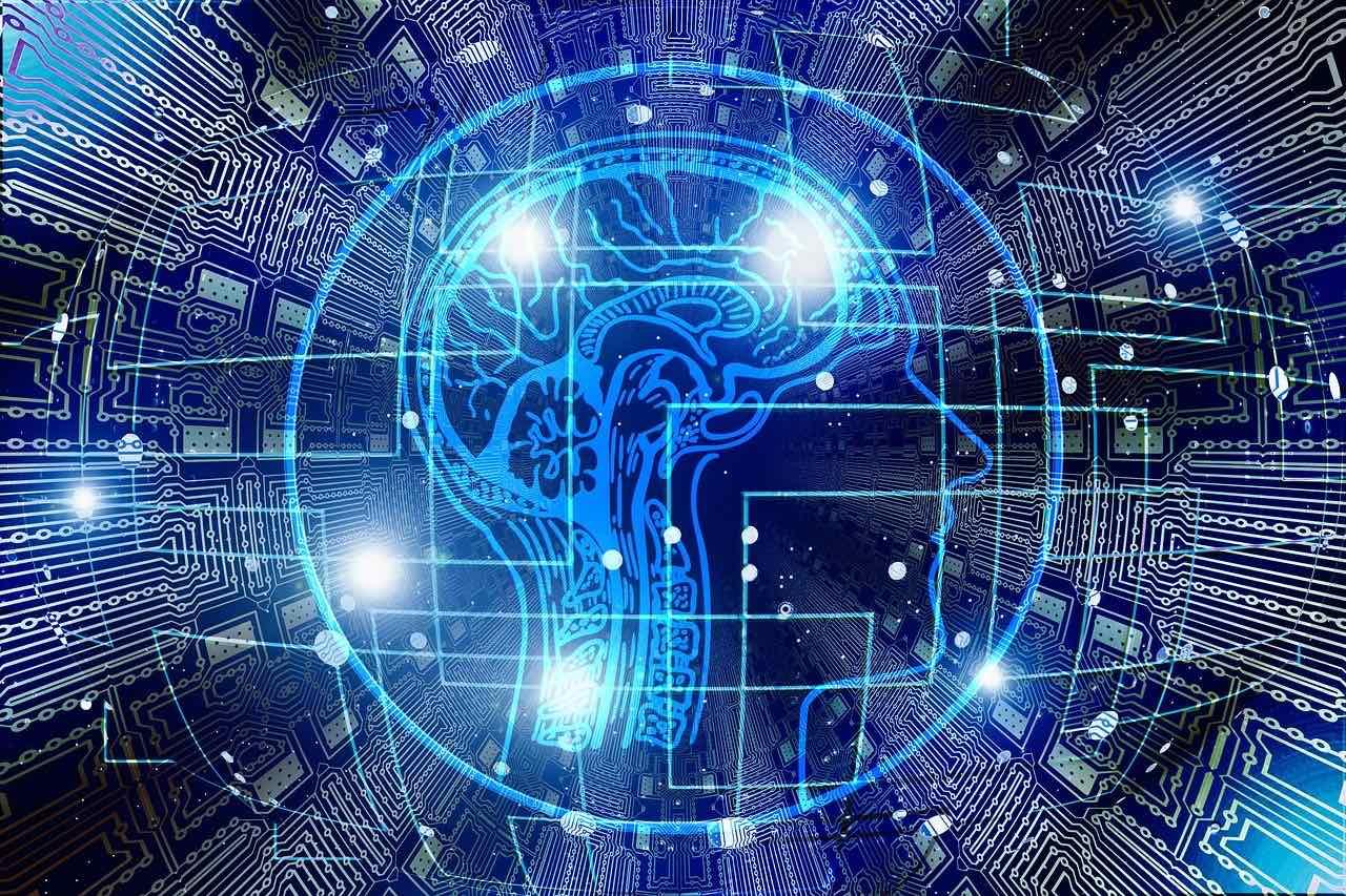 Citicolin wirkt im Gehirn